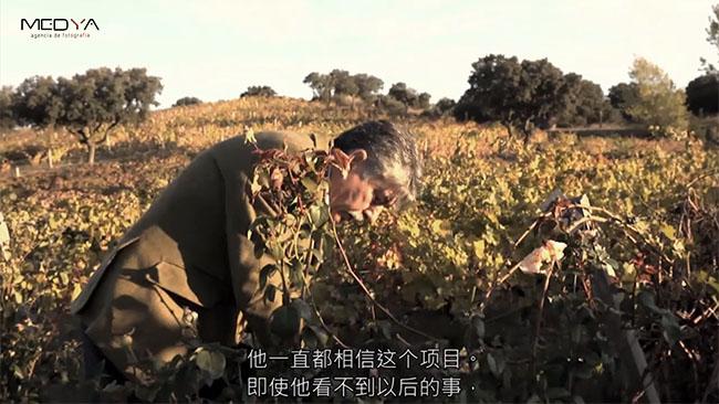 Subtitular vídeos en chino